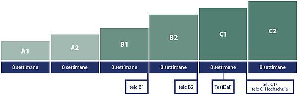 Carl Duisberg Sistema dei corsi: Durata del processo medio di apprendimento per gli esami di lingua tedesca